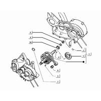 Gruppo cilindro-pistone-spinotto